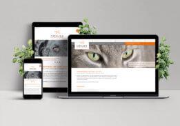 neue tierklinik – neue website!